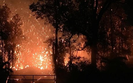 Hawaii volcano eruption forces lava and dangerous gas through cracks in ground