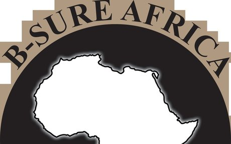 B-Sure Africa (@bsureafricainsurance) • Instagram photos and videos