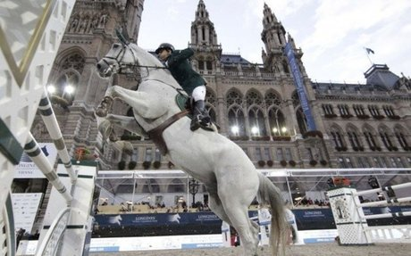 Showjumping: Organisation Vienna Masters declared bankrupt