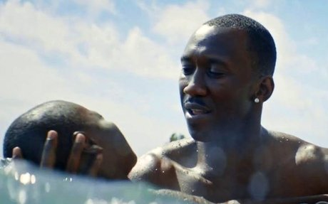 The critics are wrong: Moonlight is boring and pointless | Coffee House