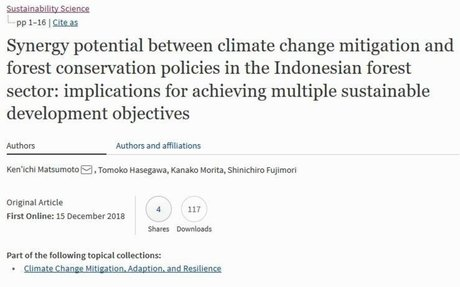 Synergy potential between climate change mitigation and forest conservation policies