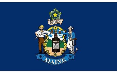 Maine Land Surveyors (MSLS)