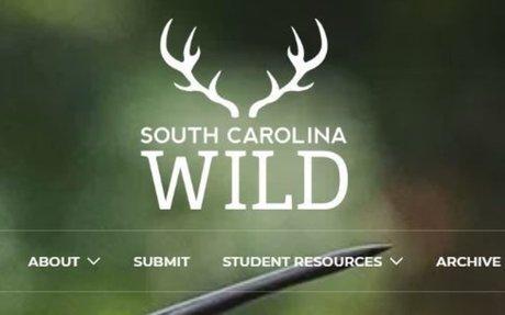 South Carolina Wild |