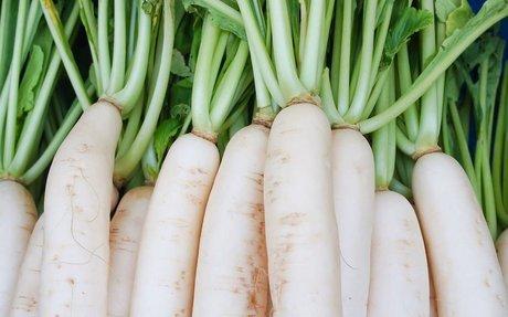 20 Surprising Benefits Of Radish