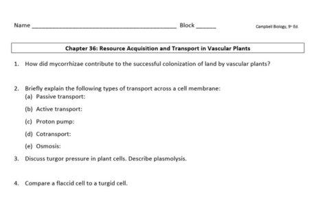 Ch. 36-37 Study Guide 9e.doc
