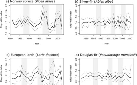 Intra-specific variation in growth and wood density traits under water-limited conditions