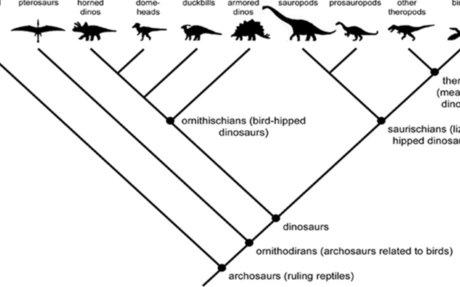 Your Holiday Dinosaur