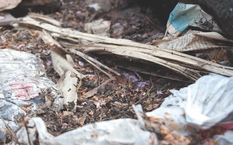 Digital Litter Index Aims to Catalog and Reduce Philly's Trash Problem