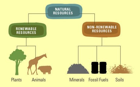 Why are natural resources so important?