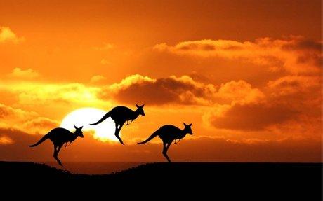 Air Mauritius Promo to Australia - Atom Travel