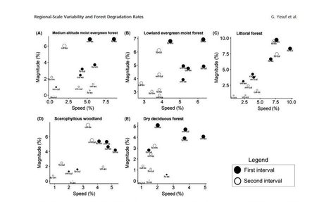 Assessing regional-scale variability in deforestation and forest degradation rates