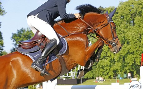 Governance: FEI Working Group Makes Recommendations on Jumping Invitation Rules