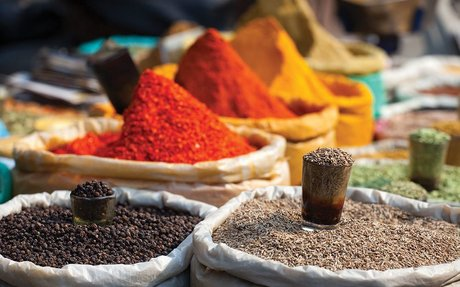 Organic Spices, Herbs, Cerals, Pulses, Oil seeds, Feed & More