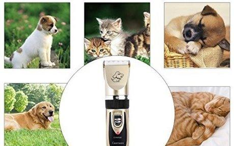 Top 10  Best Professional Dog Grooming Kits Reviews on Flipboard
