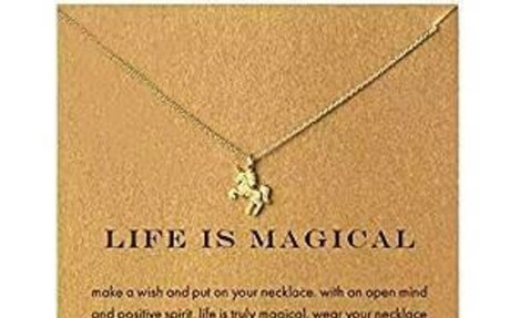 Amazon.com: SOURBAN Women Unicorn Pendant Clavicle Alloy Chain Necklace Jewelry with Card