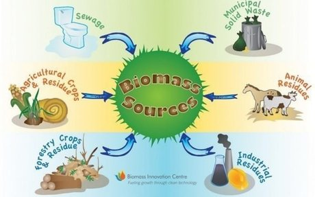 Biomass - Energy Explained, Your Guide To Understanding Energy - Energy Information Admini
