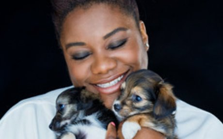 #4 - Celebrities adopt dogs