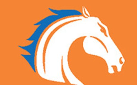 Played college volleyball at UT-Arlington