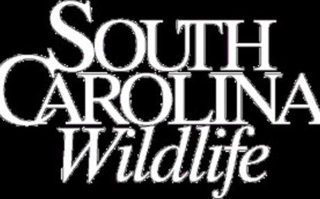 SC Wildlife Magazine