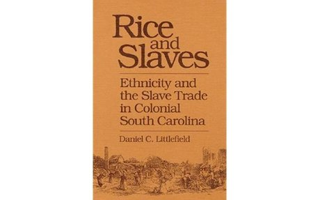 Rice and Slaves