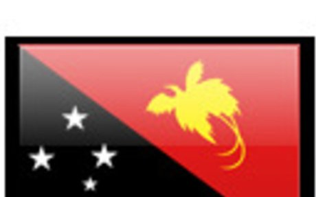 Papua New Guinea Surveyors