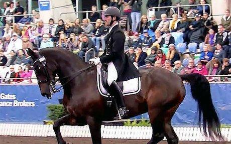 Dressage: John Thompson & JHT Antonello Win Hastings, NZ CDI3* Grand Prix Special