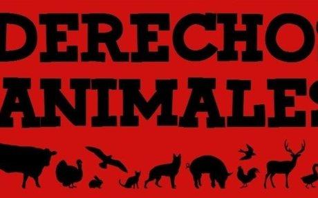 «Derechos Animales: Introducción Básica»