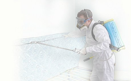 Superior Pest Control Services in Arlington Heights IL