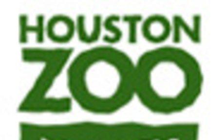 Animal Webcams - HOUSTON ZOO
