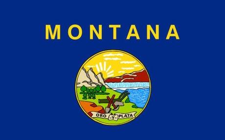 Montana Land Surveyors