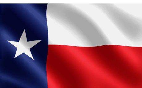 Texas Land Surveyors (TSPS)