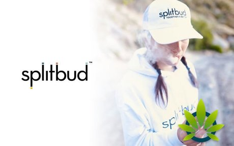 Splitbud Officially Makes an Entrance into the Marijuana Space to Fight Inaccessible Ca...