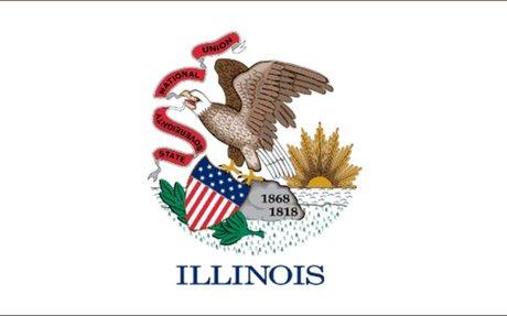 Illinois Land Surveyors