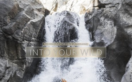 Into Your Wild (featuring Colibri), by The Human Experience