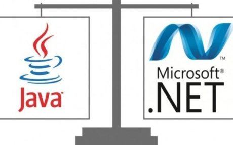 .NET Vs Java: Which is the Best | Dotnetlanguages