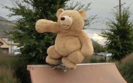 Free bear hugs!