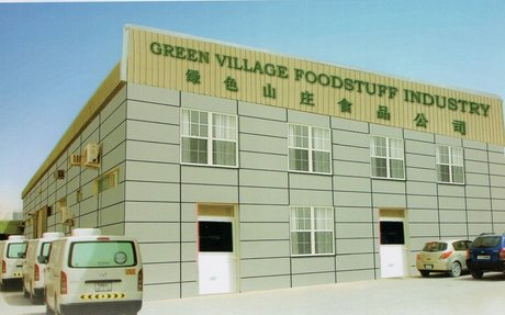 About Green Village :