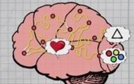 Le cerveau - Sciences | ARTE