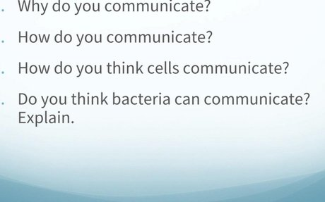Ch. 11 Cell Communication