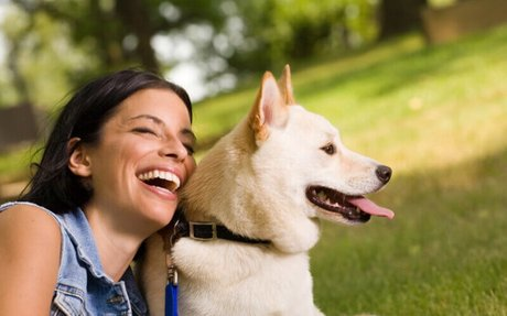 Caring for Animal Companions