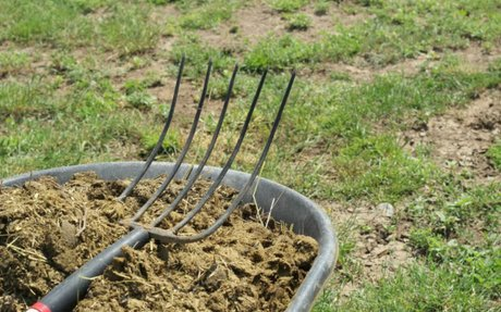 10 Things Your Non-Homesteading Friends Just Don't Understand • The Prairie Homestead