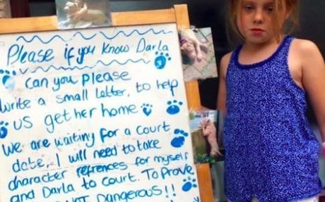 Little Girl Breaks Wrist Trying To Find Dog That Police Took From Her