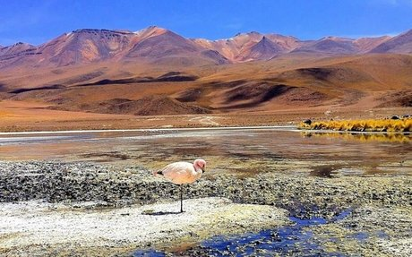 12 Reasons Your Next Trip Should Be To Bolivia