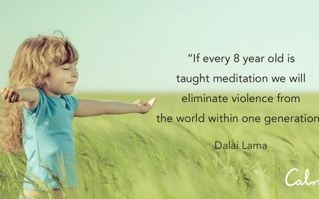 The Calm Schools Initiative