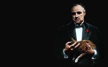 What is The Godfather Effect?
