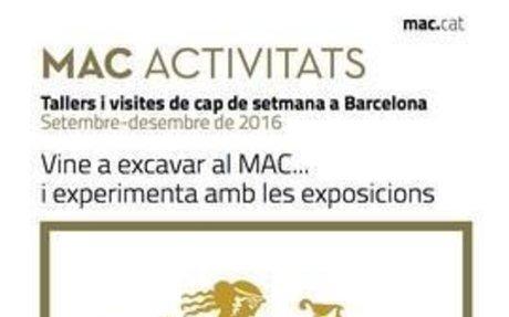 Museu d'Arqueologia de Catalunya - Activitats novembre