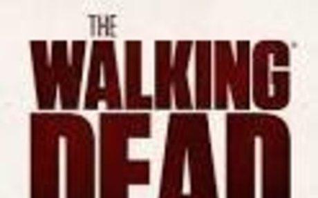 the walking dead - Google Search