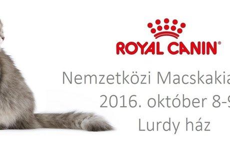 Macskamánia - Magyar Macska Egyesület
