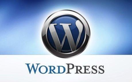 Profitez des milliers de thèmes proposé par WordPress gratuit ou payant avec cPanel