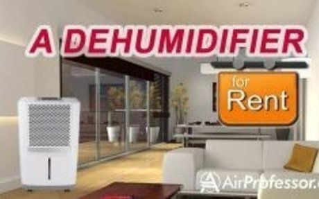 Choose the Best commercial Dehumidifier– Airprofessor.com